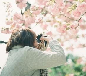 春天来了:不花钱也能乐享春天
