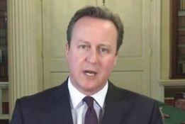 卡梅伦首相就英国女王90岁大寿发表视频贺词