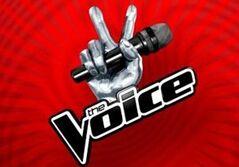美国好声音The Voice of America