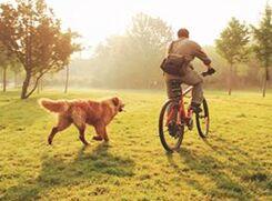 关于晨练的想法Doing Morning Exercises