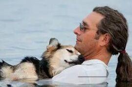 狗狗与人的感情 The Relationship Between Dogs and Men