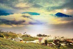 乡村的景色 The Scenery in the Village
