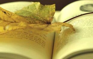 英语四级作文范文:考试证书
