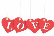 我们需要爱 We Need Love