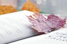 单词记忆有诀窍:通过切分法反向记忆单词