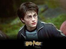 关于哈利波特的记忆 The Memory of Harry Portter