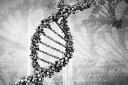 BBC在线收听下载:美国科学家首次修复人类胚胎DNA