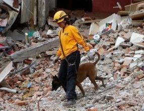 英语访谈节目:为什么墨西哥城易受地震的影响?