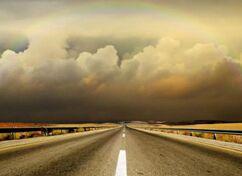 The Road I Chose 我选择的路