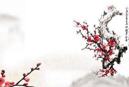 中国的文化 Chinese Culture