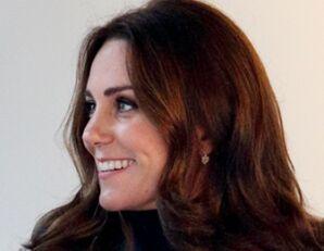 凯特王妃第三胎将于明年4月出生
