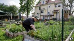 城市农场获得支持