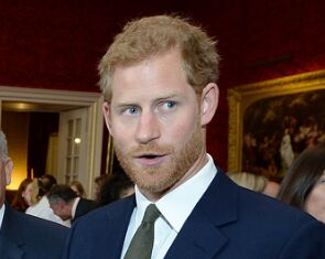 哈里王子呼吁关注心理健康!高压工作人群更需要