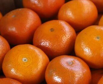 钱柜777官方网站:巴西与美国确认分子有助于对抗柑橘黄龙病