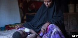 VOA常速英语:Zero Tolerance for FGM/Cutting