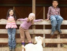 实战口语情景对话 第1151期:Farm Animals 农场动物