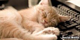 钱柜777官方网站:Ways We Sleep Zzzzzz