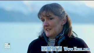 英语访谈节目:白鲸幼崽搁浅兽医展开救援行动