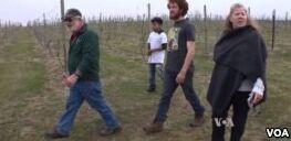 VOA慢速英语:新农业学校传授农业秘诀