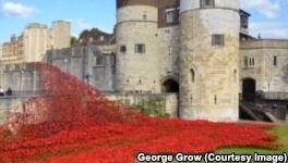 VOA慢速英语:花墙对阵亡将士纪念日的意义