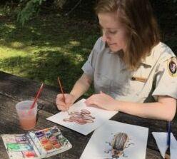 VOA慢速英语:通过艺术支持国家公园