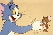 还记得儿时的汤姆和杰瑞吗?《猫和老鼠》真人版要开拍了!