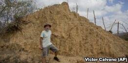 在巴西农村 白蚁建造了数百万个土丘