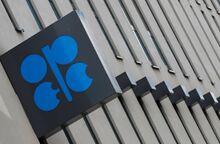 """热门单词:""""石油输出国组织""""用英文怎么说?"""