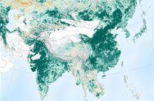 地球更绿了!美国航天局:中国和印度贡献最大
