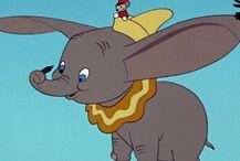关于小飞象你不知道的10件事