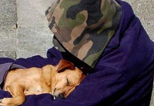 英语访谈节目:无家可归者并不孤单