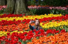 游客太多不堪重负  荷兰不再推广旅游