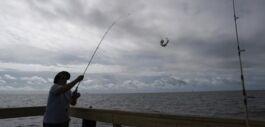 """VOA慢速英语:墨西哥湾""""死区""""面积接近历史记录"""