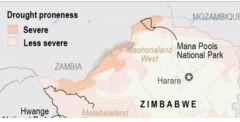 VOA慢速英语:严重的干旱天气正在杀死津巴布韦的野生动物