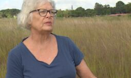 VOA慢速英语:拯救全球的湿地