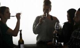 VOA慢速英语:华盛顿州成为葡萄酒工业的一支力量