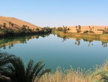 经济学人下载:灌溉沙漠(2)