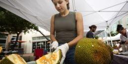 菠萝蜜是下一个肉类替代品吗?
