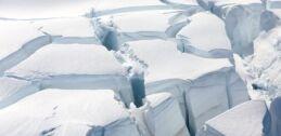 VOA慢速英语:新研究表明南极洲曾经是雨林