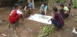 Myanmar Activists Disapprove of UN's Proposed Park
