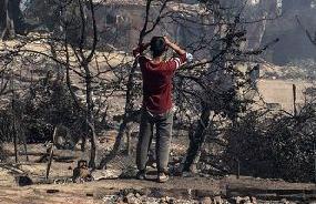英语访谈节目:莫里亚难民营发生火灾