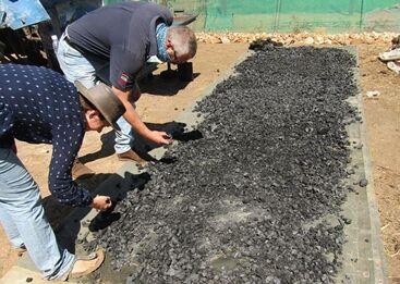 国际英语新闻:Namibian farmers turn to locally produced biochar as fertilizer