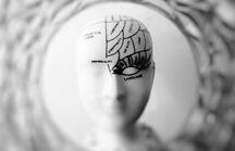 大脑如何让我们逃避人终有一死的真相