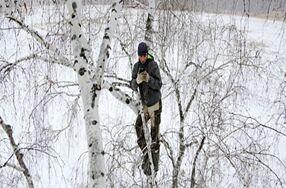 俄大学生爬树顶上网课