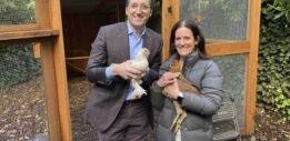 VOA慢速英语:新冠疫情期间流行后院养鸡
