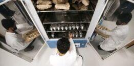 VOA慢速英语:巴西科学家计算亚马逊雨林的碳含量