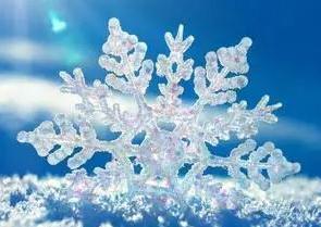 经济学人下载: 冬有雪(2)