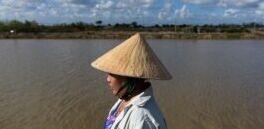 气候变化促使越南水稻种植者改为养虾